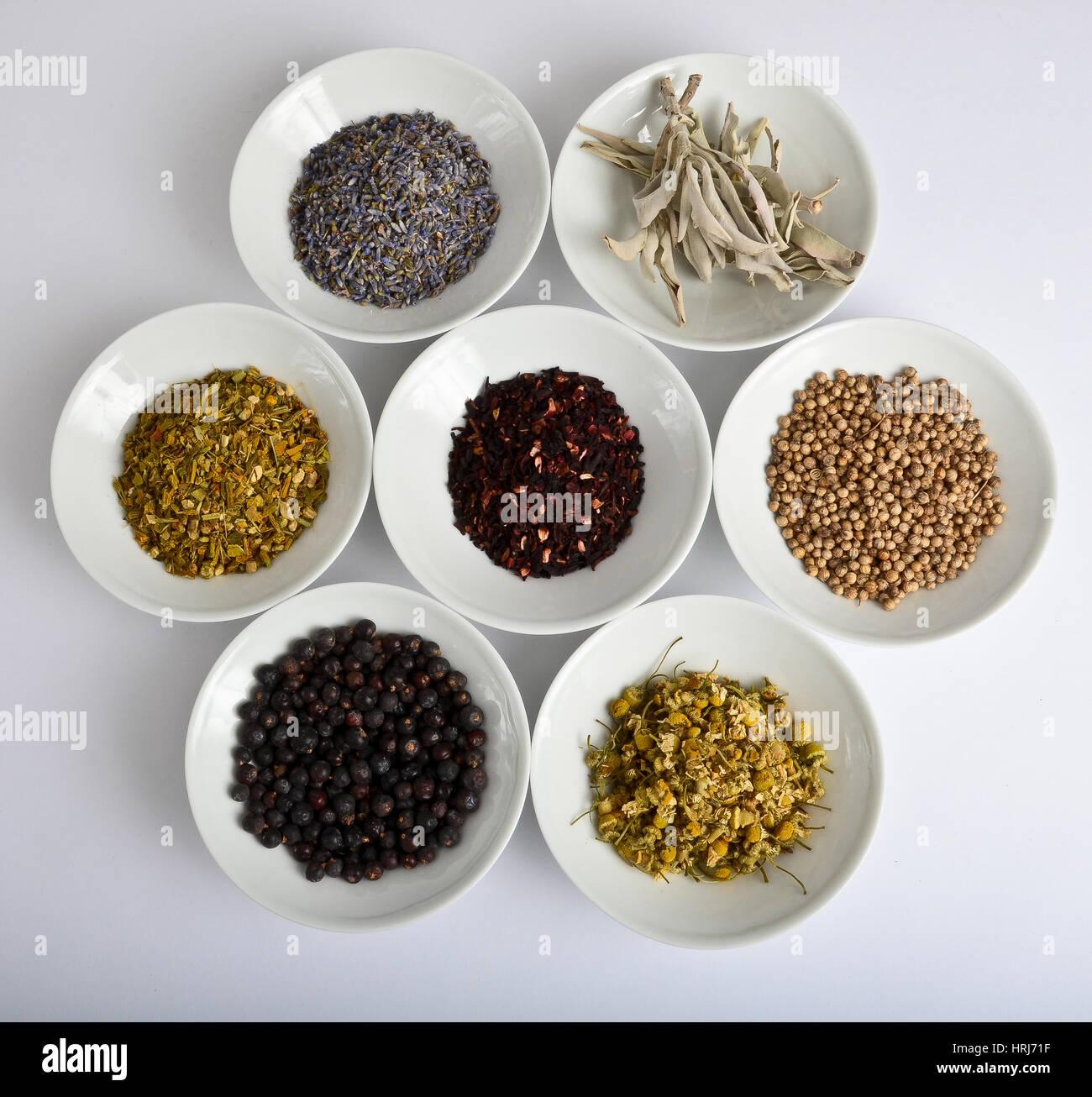 Medicinal Herbs - Stock Image