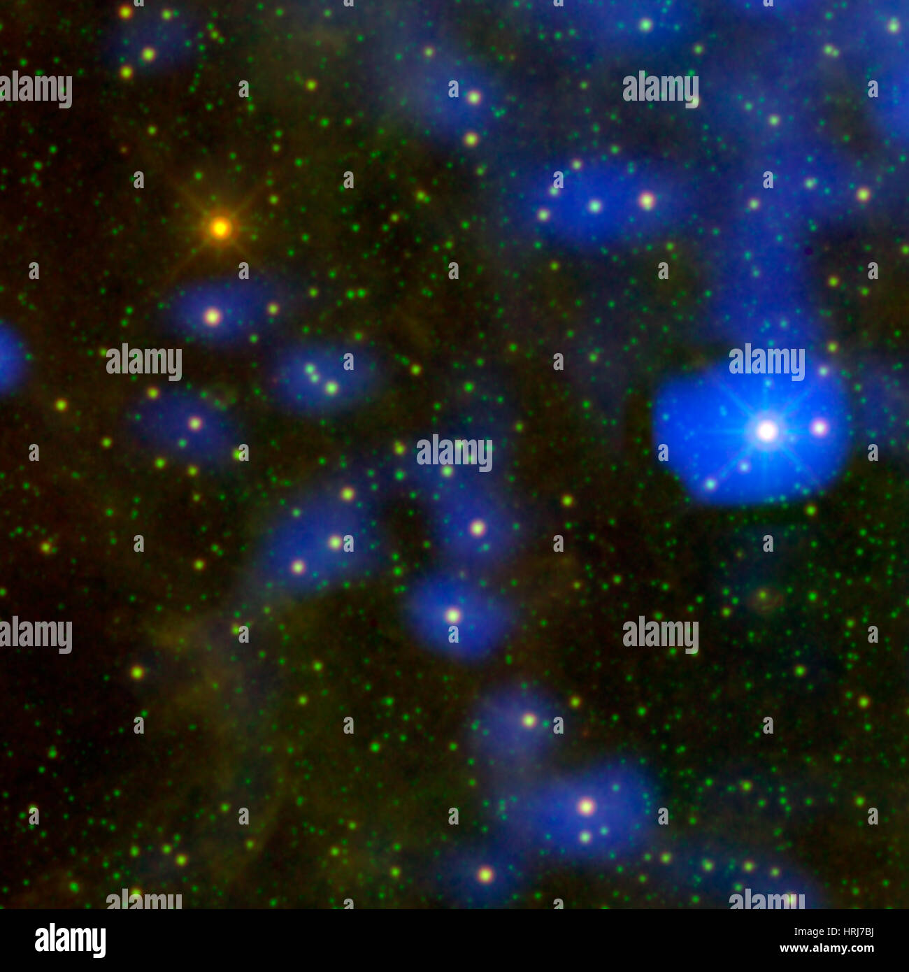 WISE J180956.27-330500.2, Dusty Star Stands Out From the Rest - Stock Image