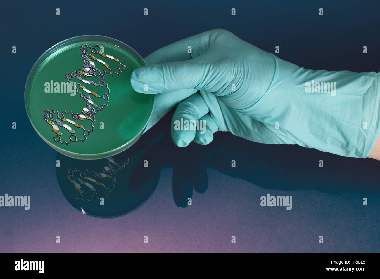 Genetic Research - Stock Image