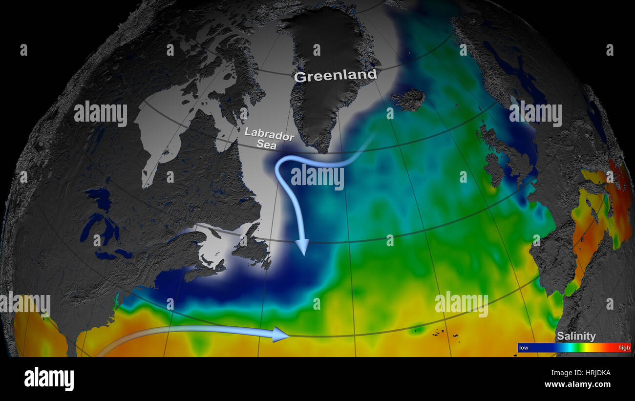 Labrador Sea, Global Salinity Data, 2011 - Stock Image