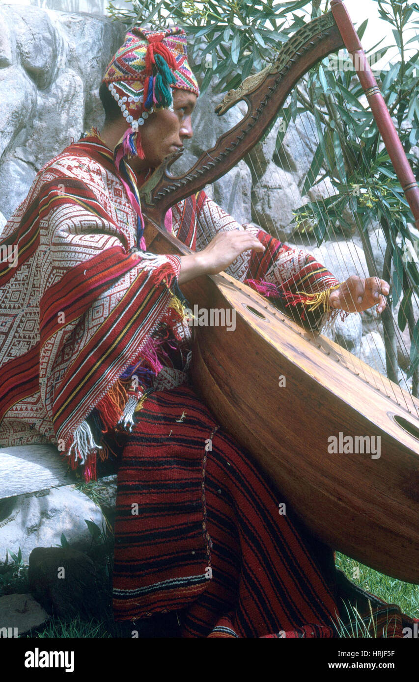 Lute Player - Stock Image
