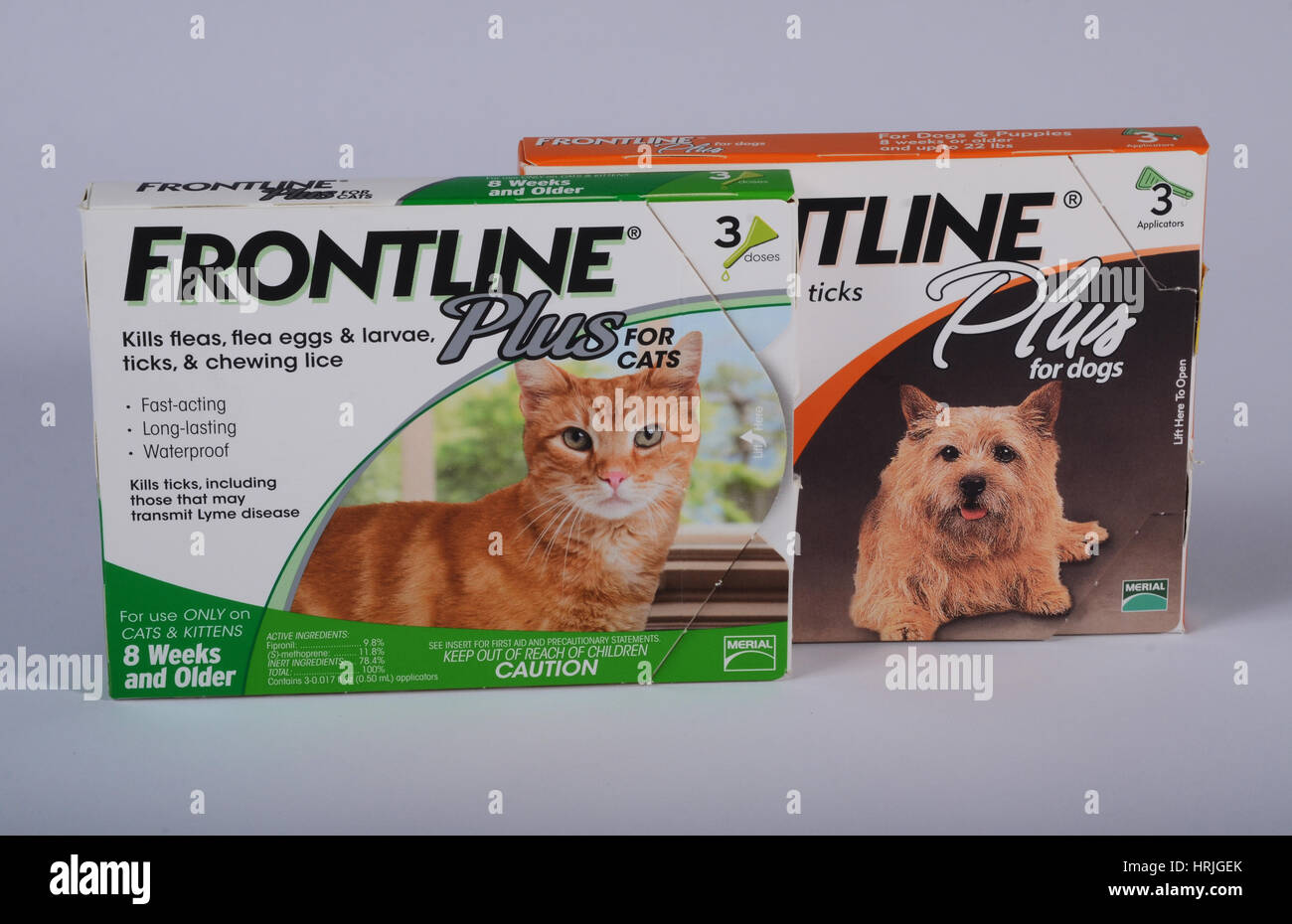 Frontline for Dogs and Cats - Stock Image