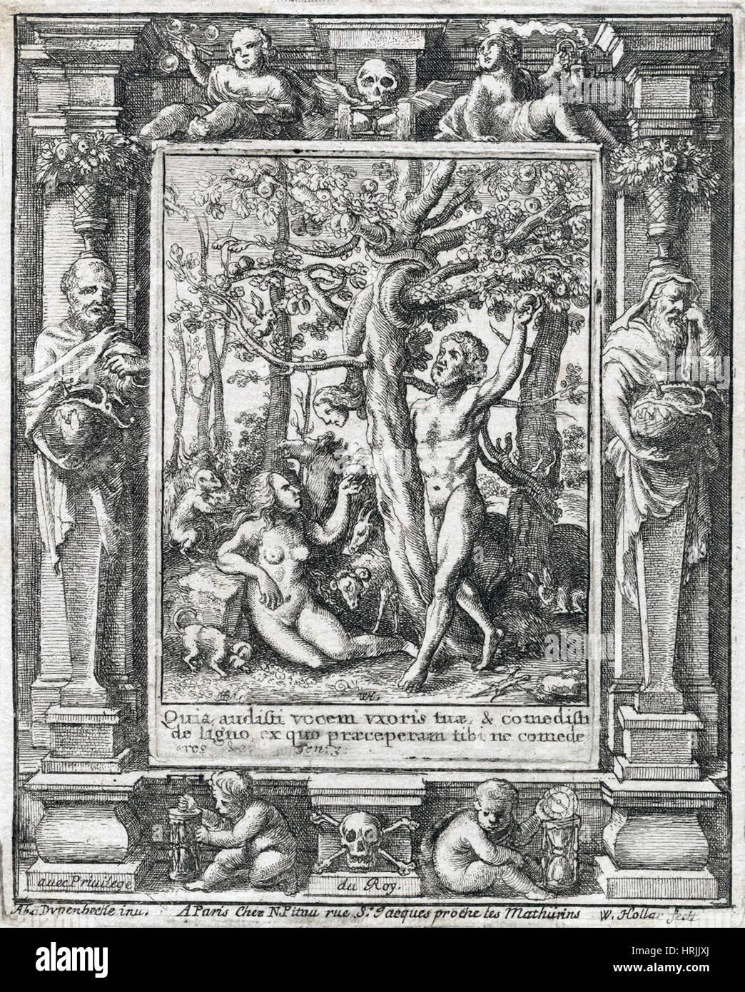 Garden of Eden - Stock Image