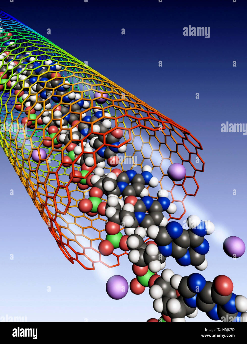Carbon Nanotube, Ions and DNA - Stock Image