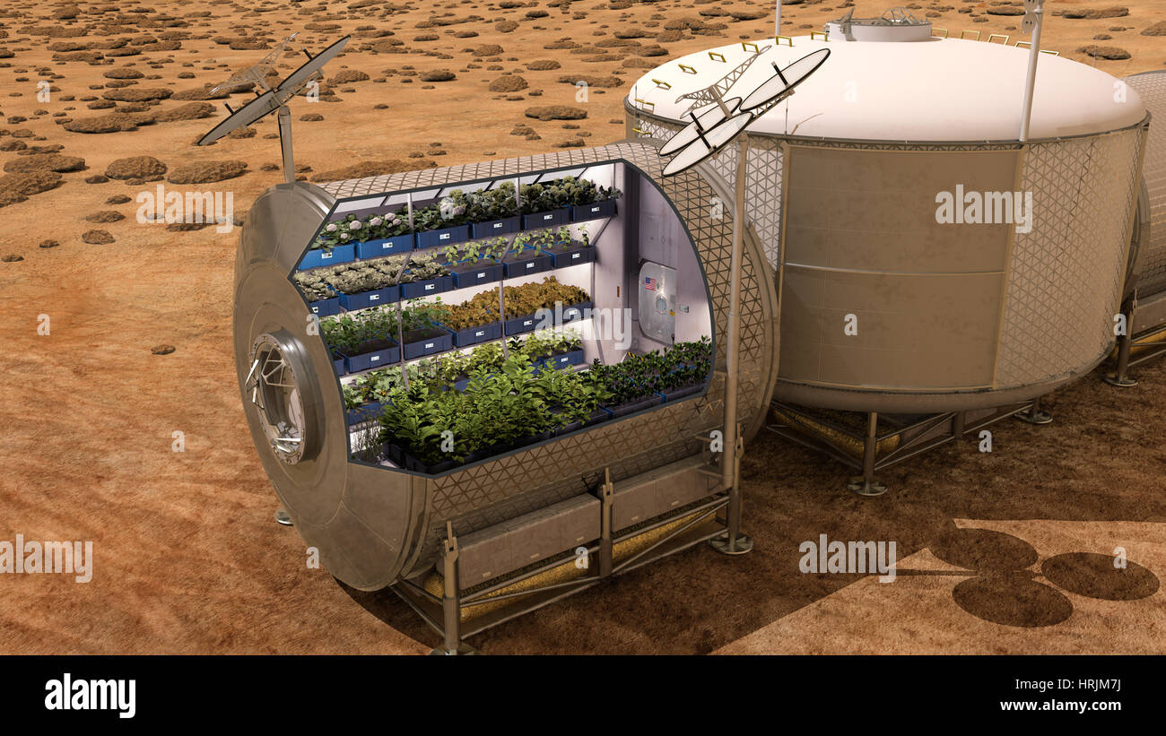 Vegetable Garden On Mars