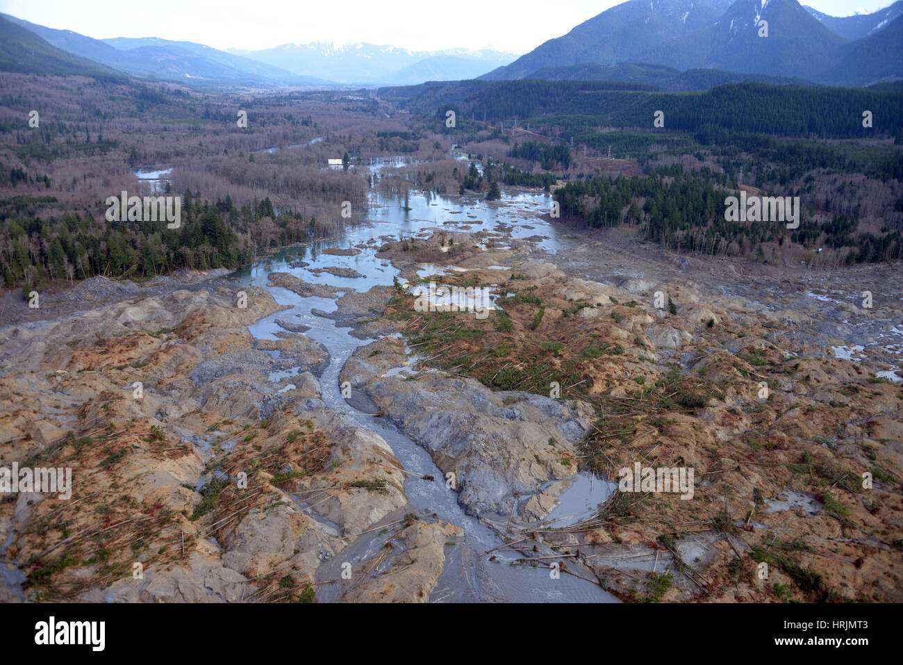 Washington Landslide, 2014 - Stock Image