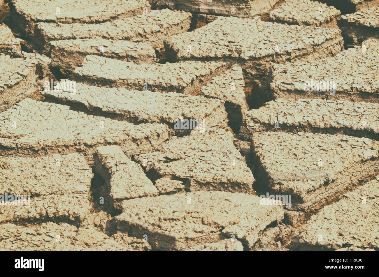 Dry mud field texture background - Stock Image