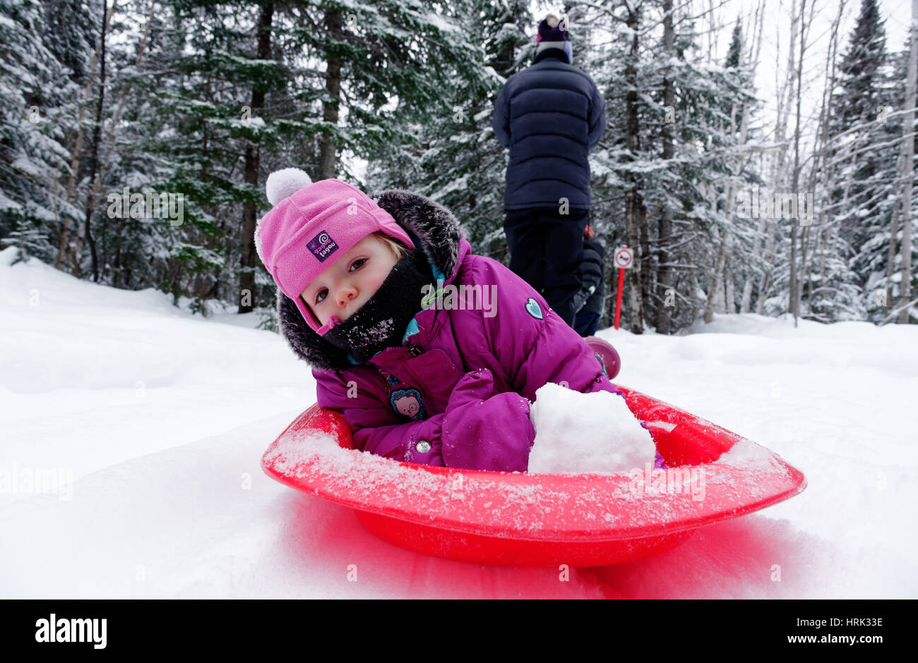 A little girl (2 yrs old) being pulled by her mother in a sledge - Stock Image