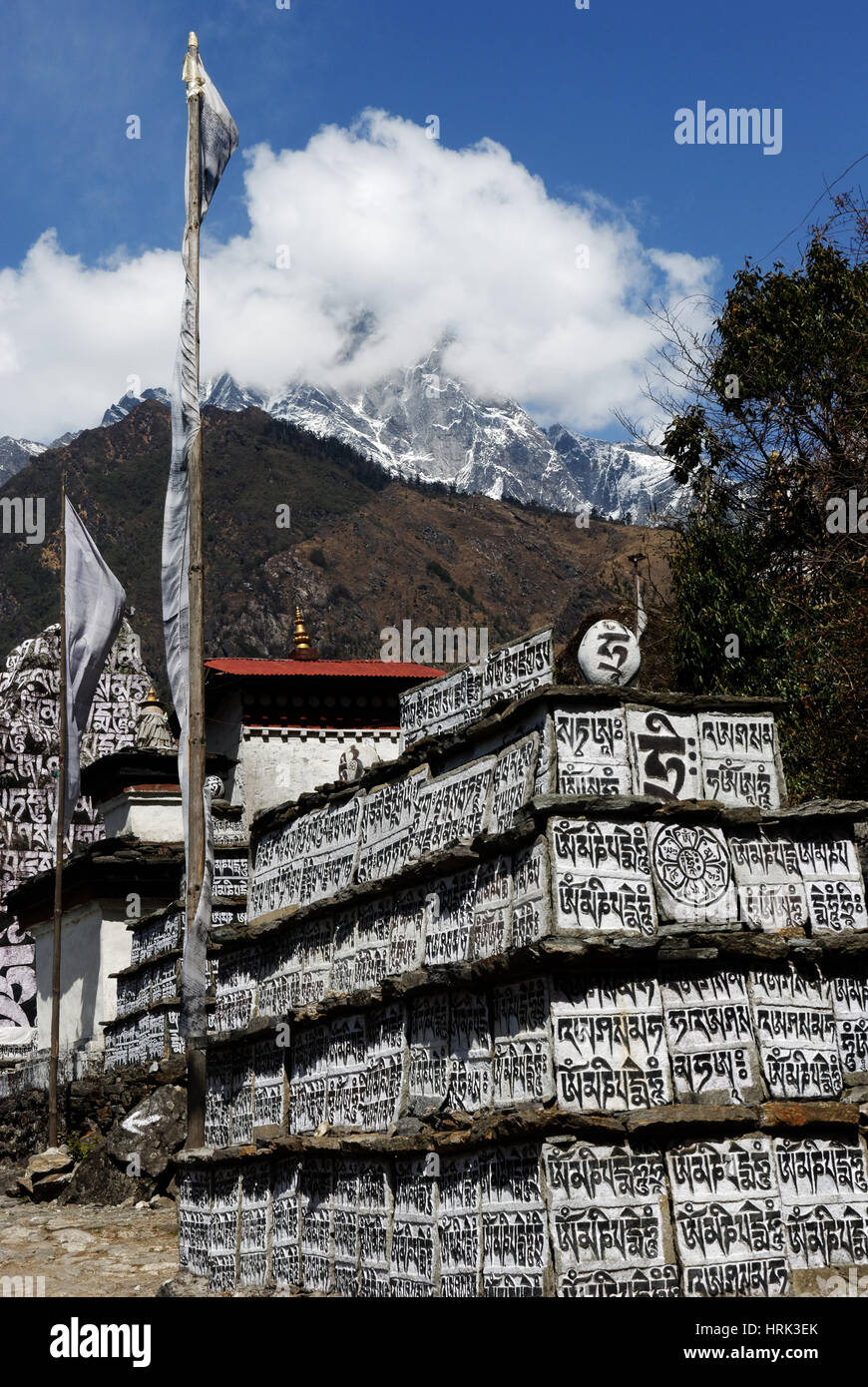 Prayers carved into square stones made into Mani Walls in the Khumbu region of Nepal - Stock Image
