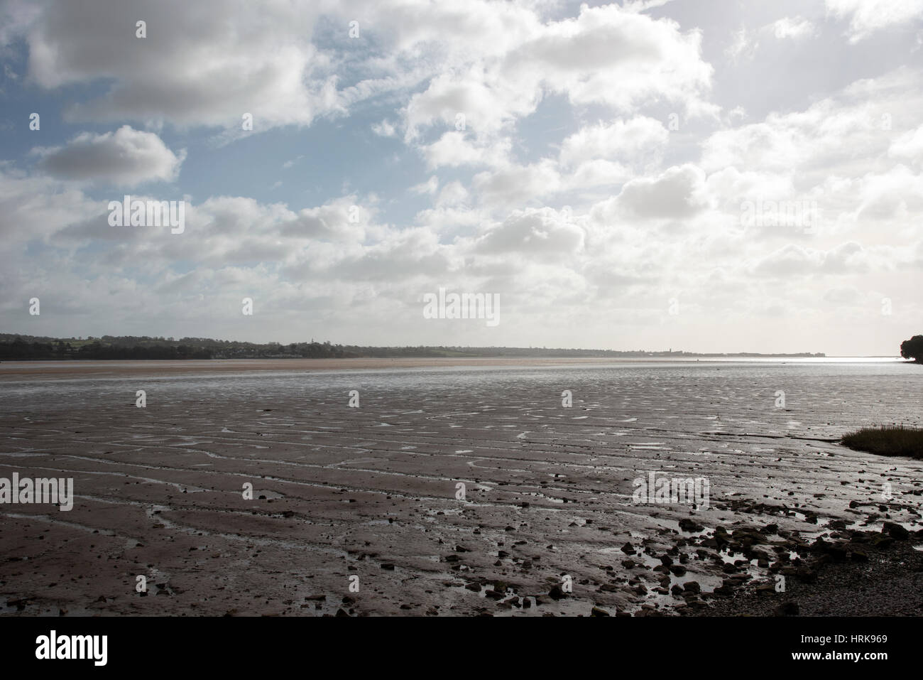The River Exe at low tide seen from Starcross South Devon England UK - Stock Image