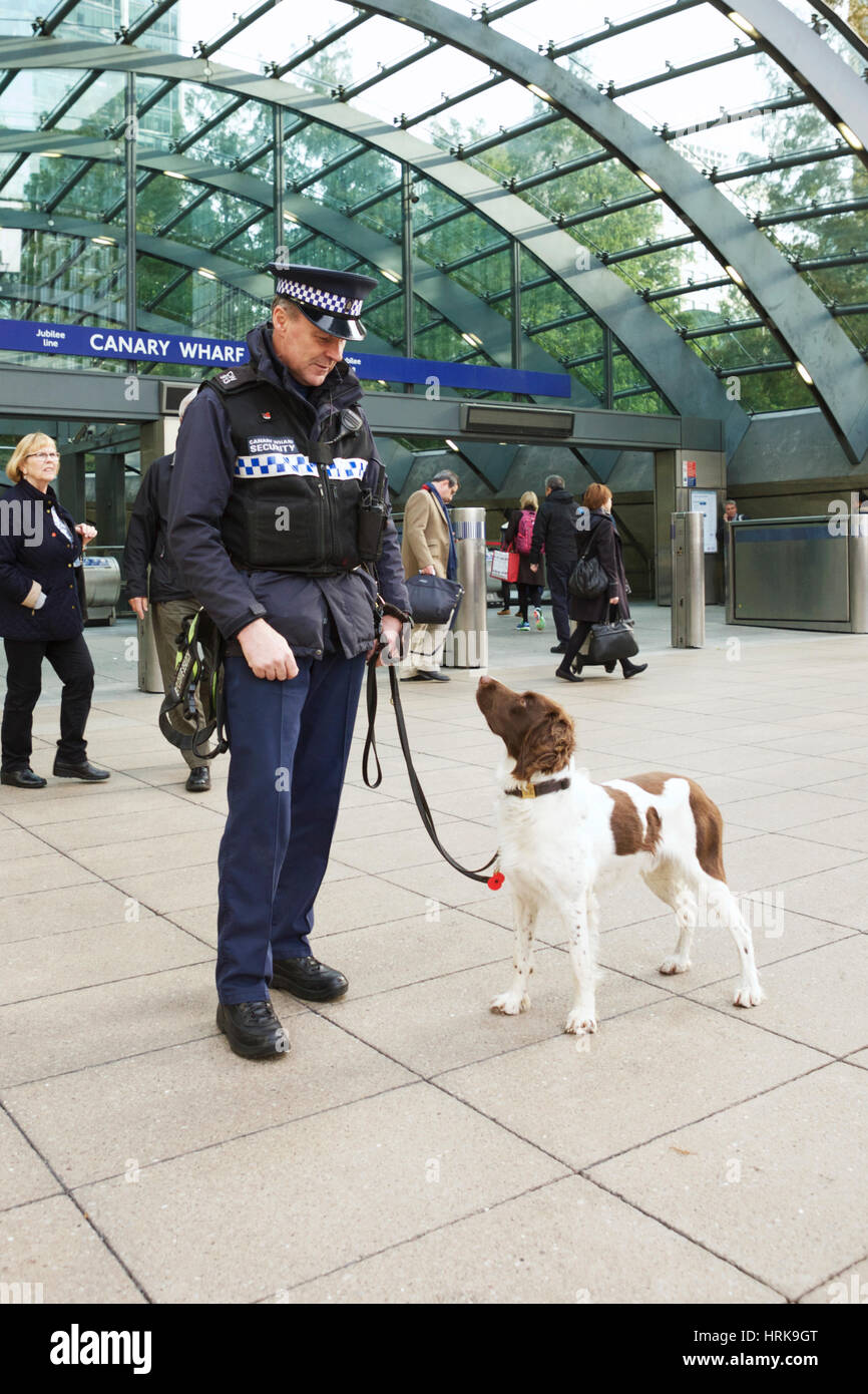 Dog handler: security guard with Springer Spaniel sniffer dog at Canary Wharf Station, London, UK.  Detection dog - Stock Image