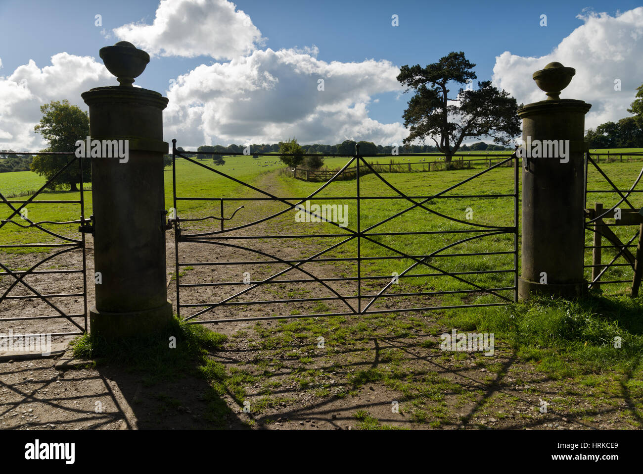 Estate gate at Bretton Hall, Yorkshire. Stone pillars with nice wrought iron metalwork. - Stock Image