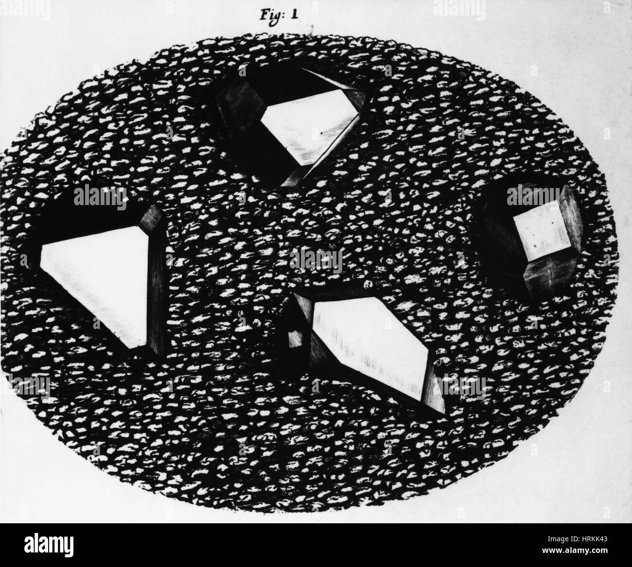 Micrographia - Stock Image