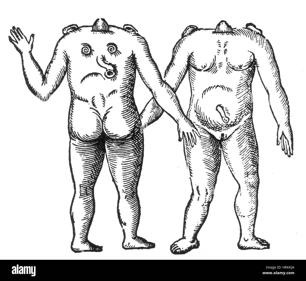 Female Monster, 16th Century - Stock Image