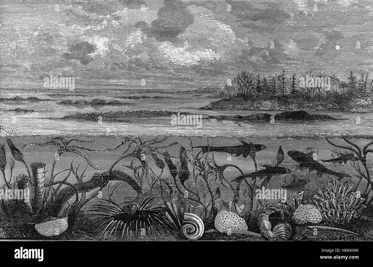 Carboniferous Marine Life - Stock Image