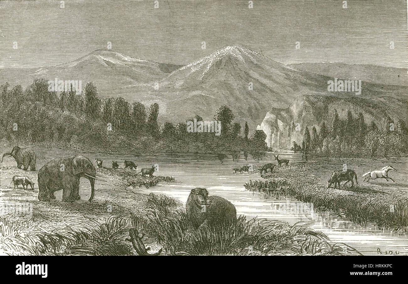 Pliocene Landscape - Stock Image