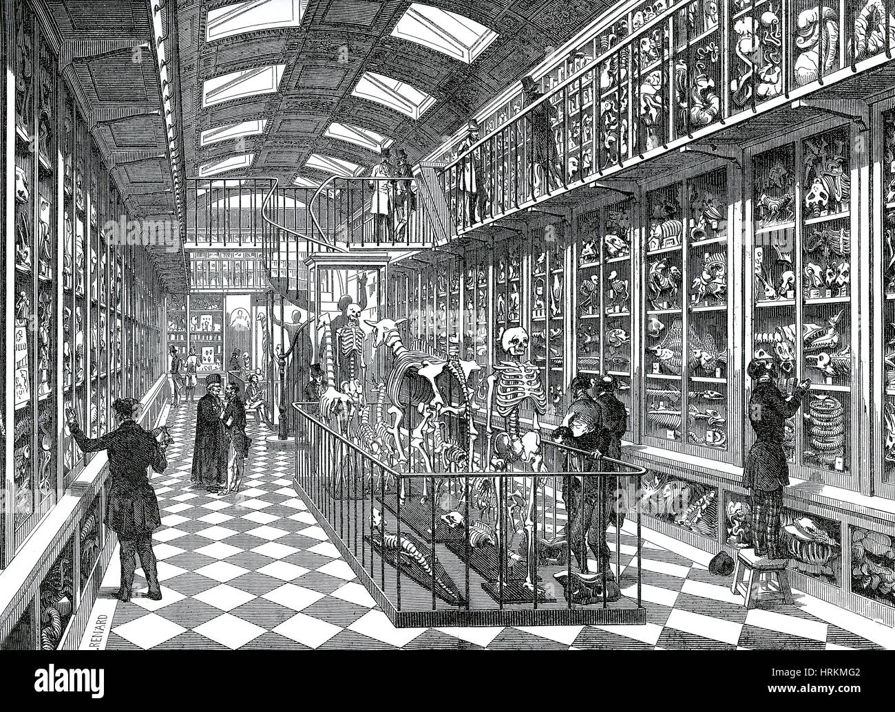 Dittrick Museum of Medical History - Stock Image