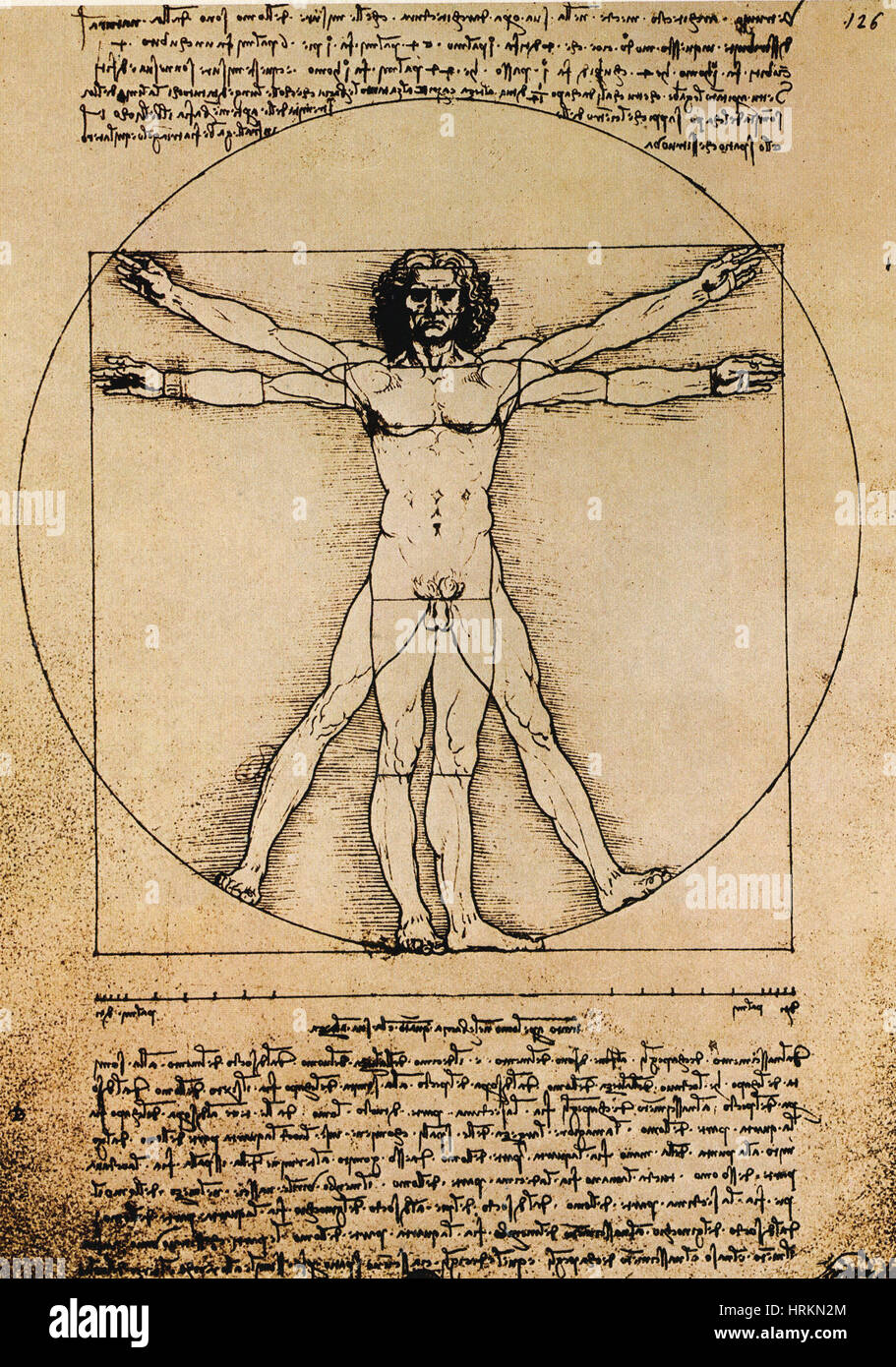 Da Vinci Rule of Proportions - Stock Image