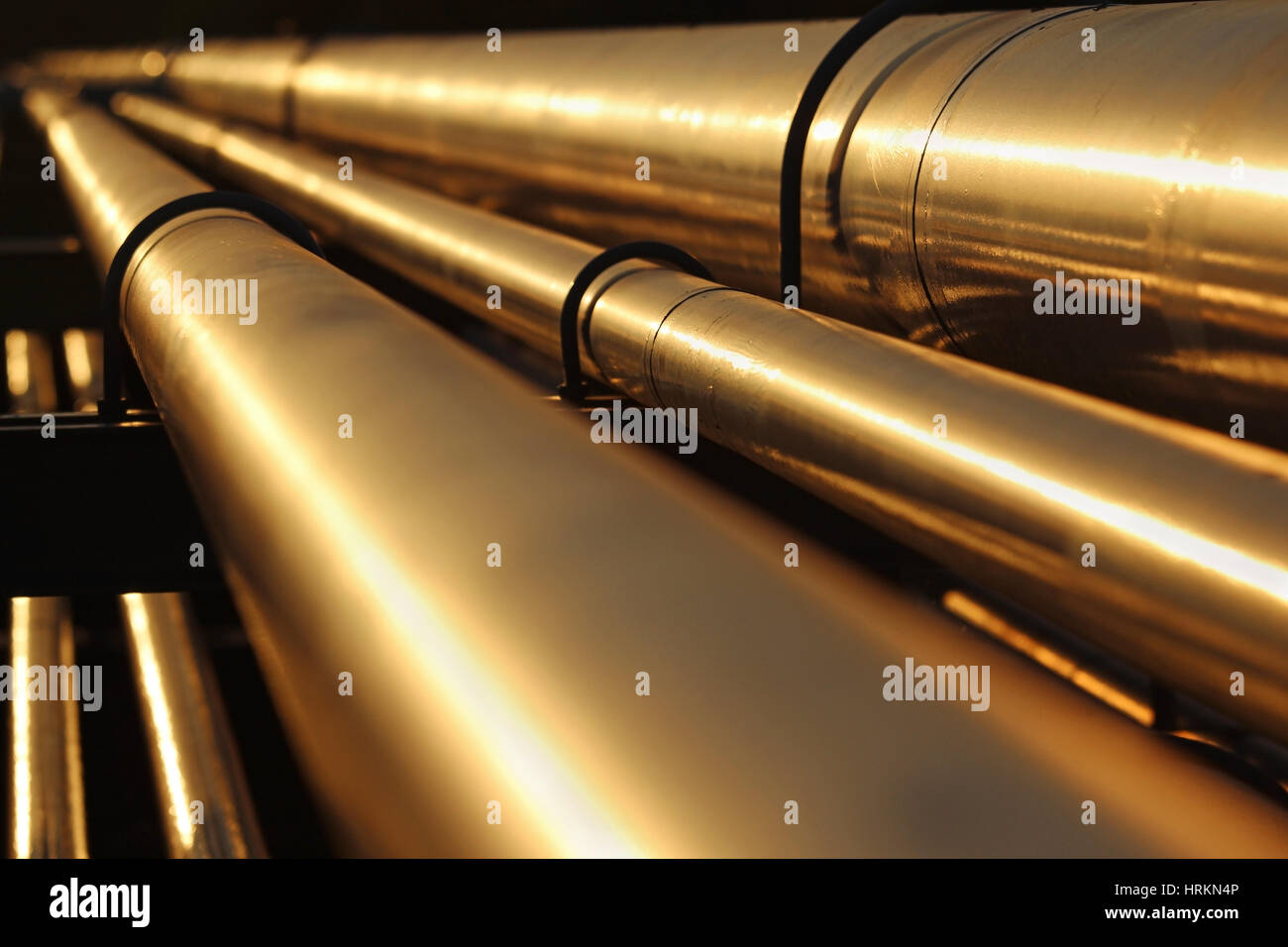 golden steel pipe line conection in crude oil factory - Stock Image
