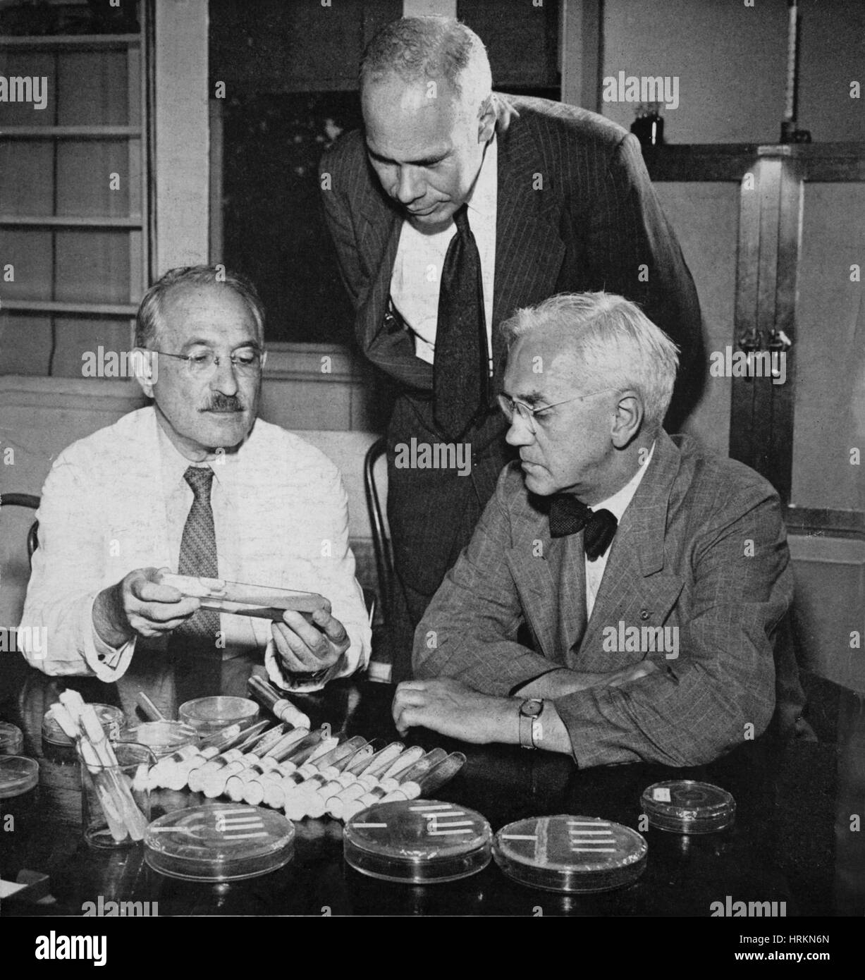 Waksman, Major, Fleming Nobel Prize Winners Stock Photo
