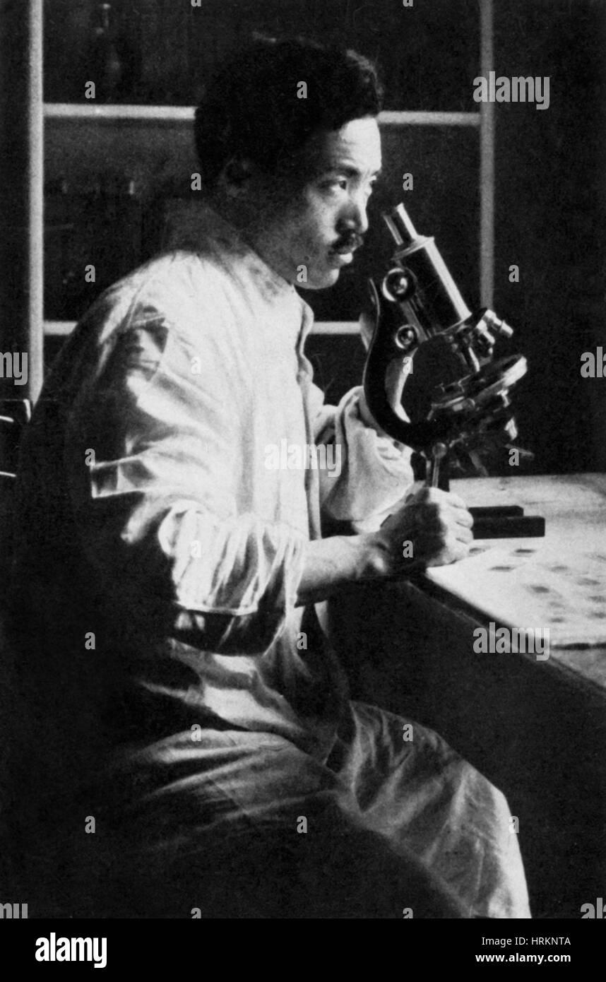 Hideyo Noguchi, Japanese Bacteriologist - Stock Image