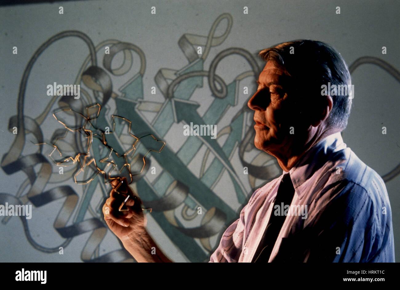 Christian Boehmer Anfinsen, Nobel Prize 1972 Stock Photo