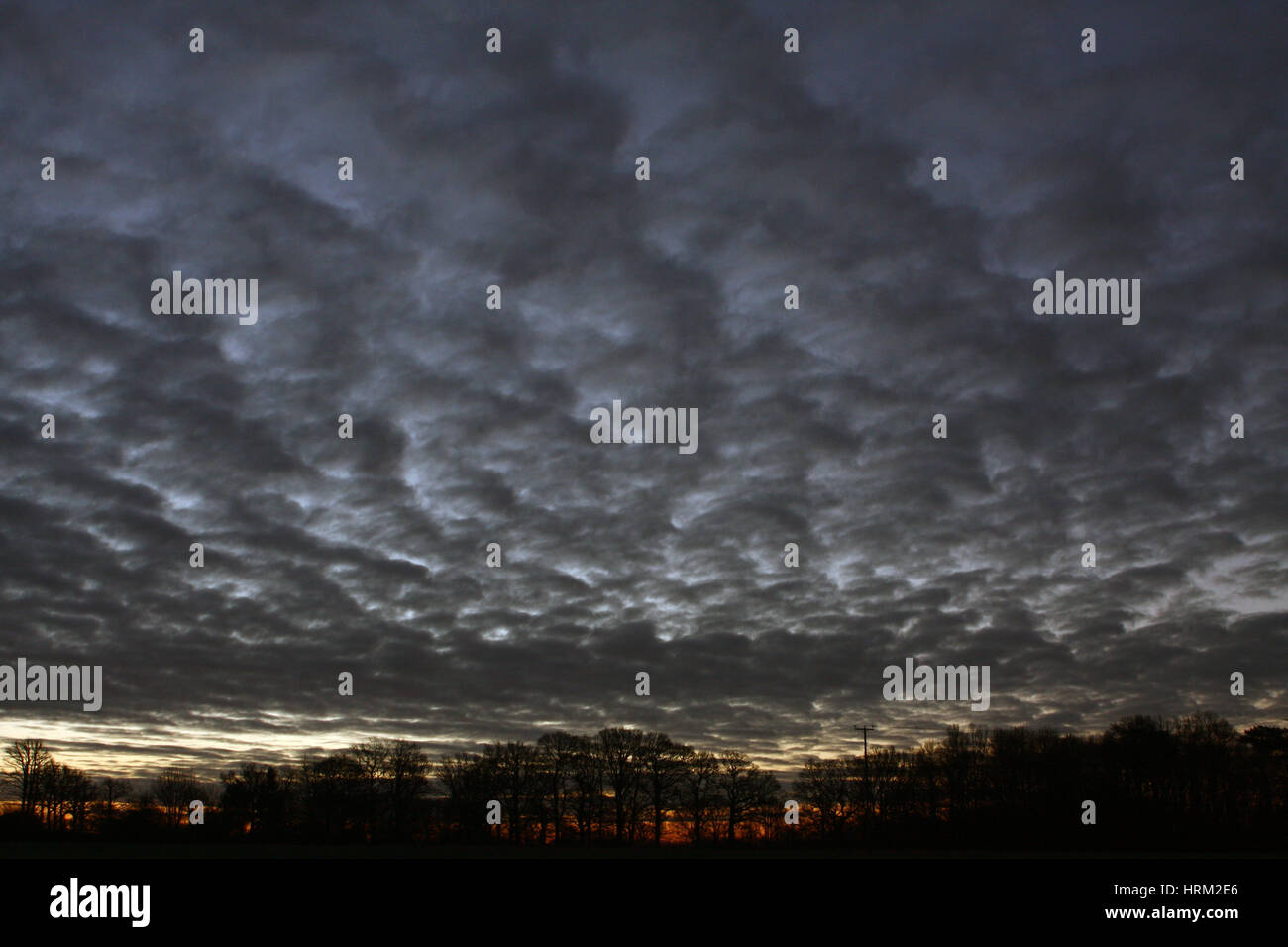 A moody sky just before a winter sunrise in Wittersham, Kent, England. Stock Photo
