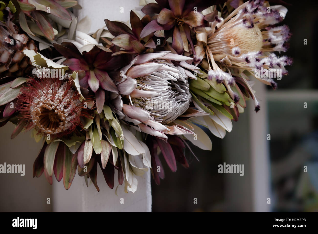 A close up shot of a dried wreath made of exotic hawaiian protea a close up shot of a dried wreath made of exotic hawaiian protea flowers in soft muted tones at a farmstand on the island of maui hawaii izmirmasajfo