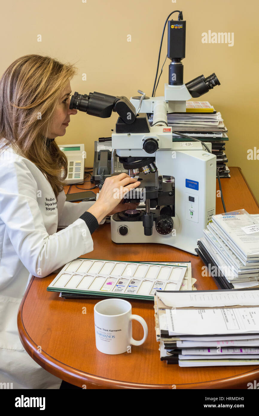 Detroit, Michigan - Dr. Rouba Ali, a pathologist at the Detroit Medical Center, examines cells under a microscope - Stock Image