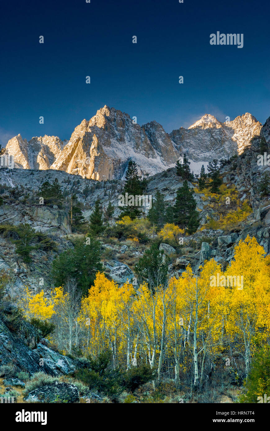 Picture Peak and aspens in fall foliage in Lake Sabrina Basin in Evolution Region, John Muir Wilderness, Sierra - Stock Image