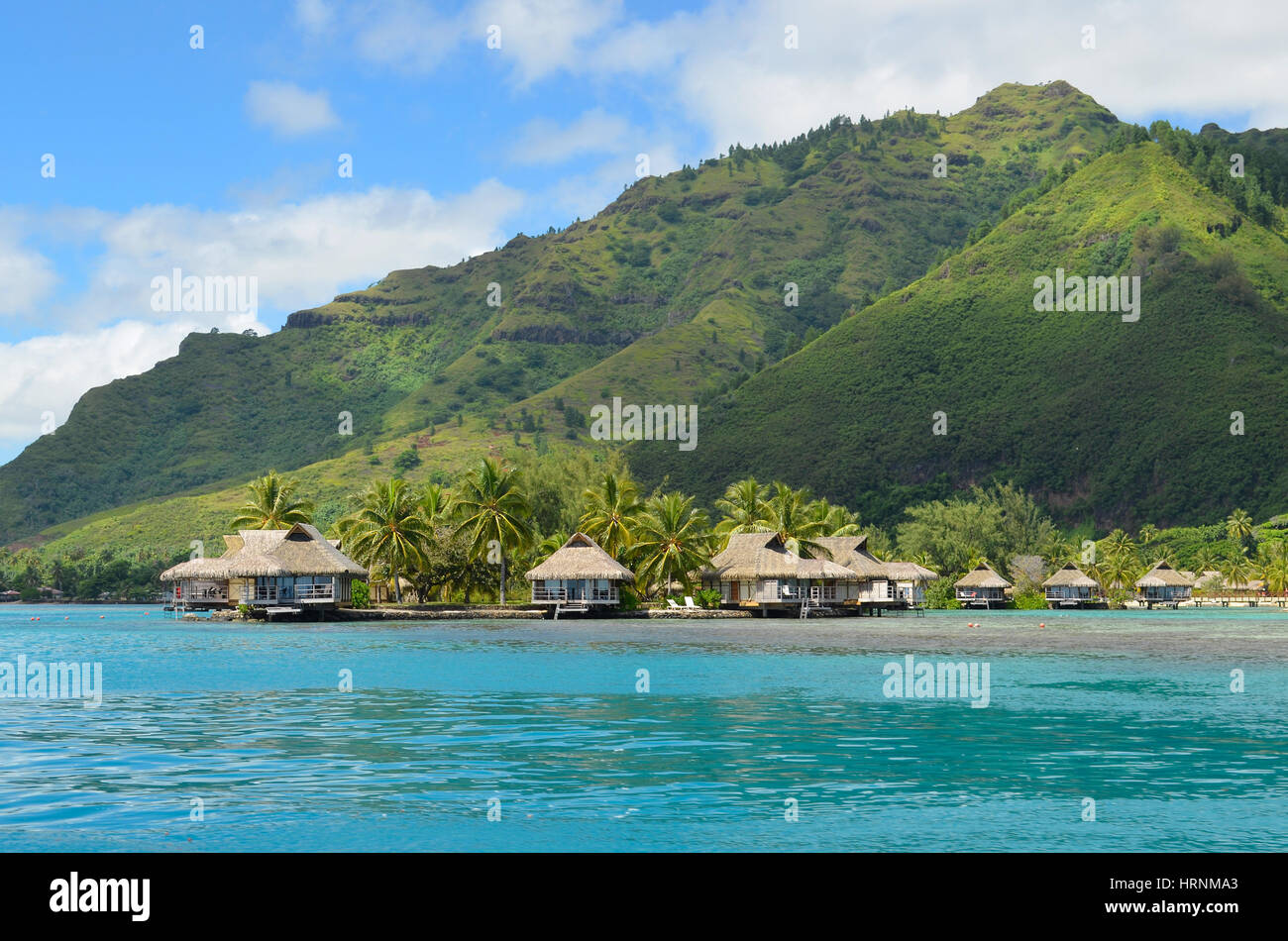 Luxury thatched roof bungalows in a honeymoon resort at the coast of a pacific lagoon on the tropical island Moorea, - Stock Image