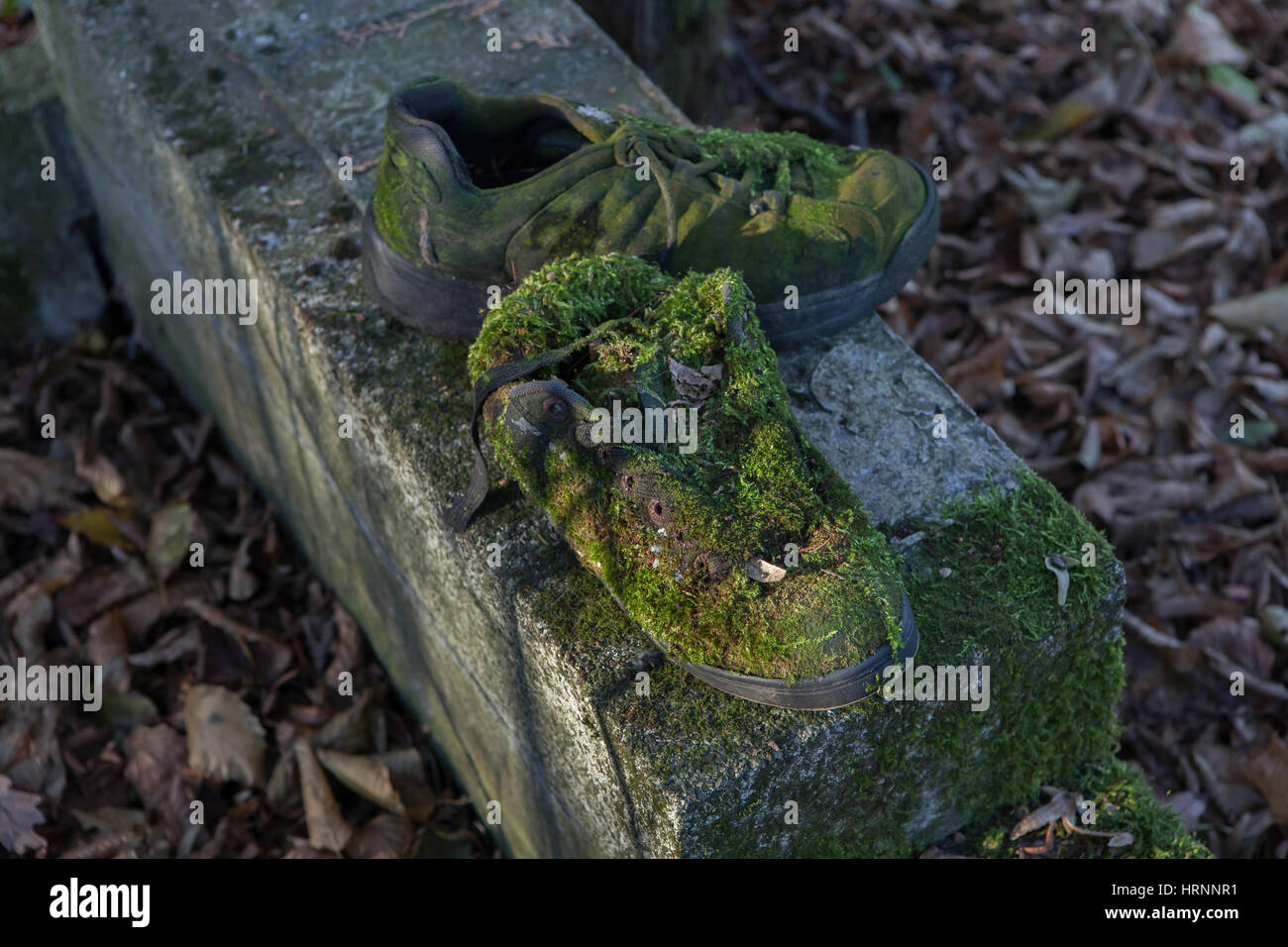 Boots covered with mosses at the abandoned Bohnicky Cemetery for patients of the Bohnice Psychiatric Hospital in - Stock Image