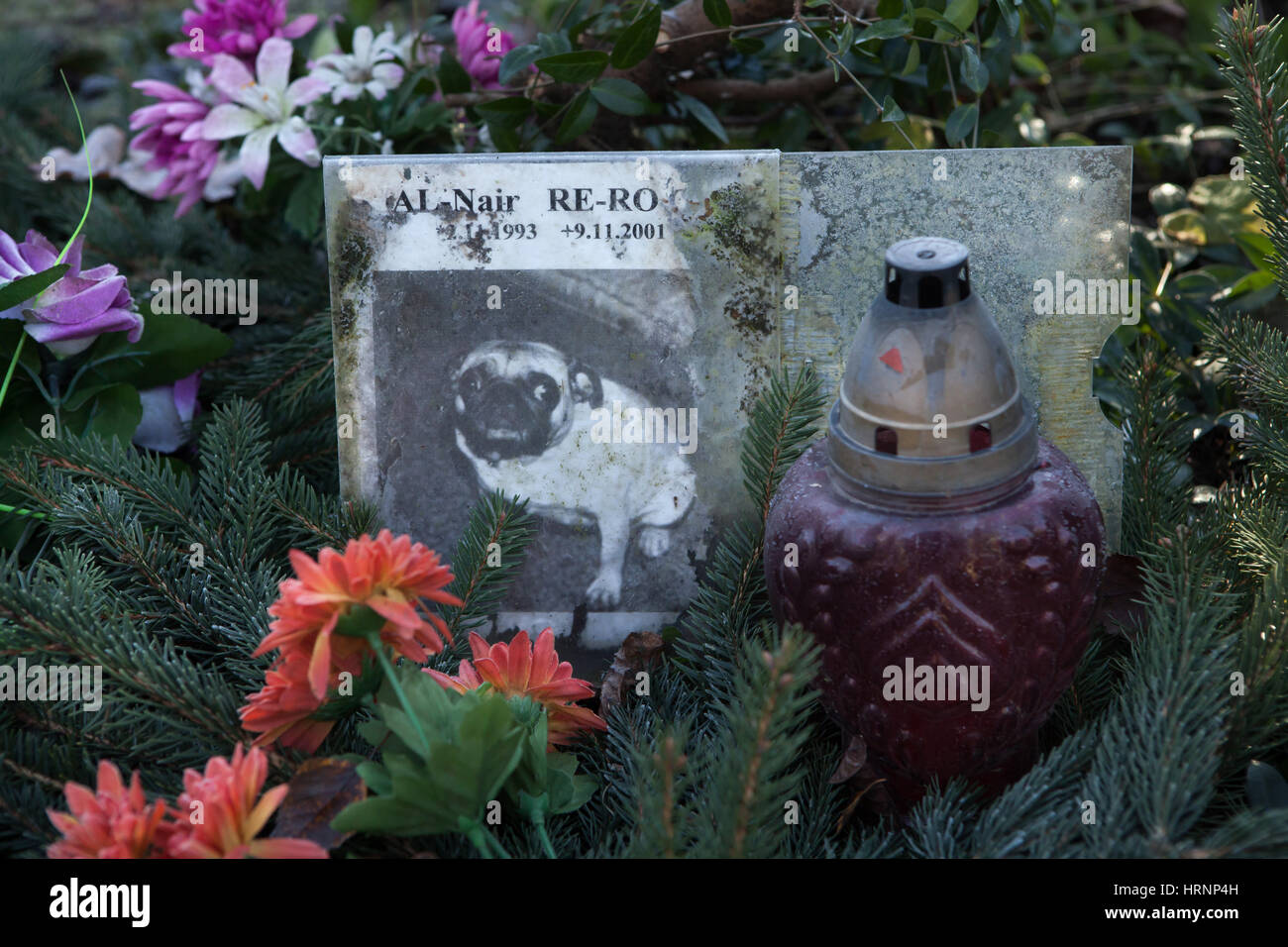 Abandoned pet cemetery in Prague, Czech Republic. The only pet cemetery in Prague located in the removed district - Stock Image