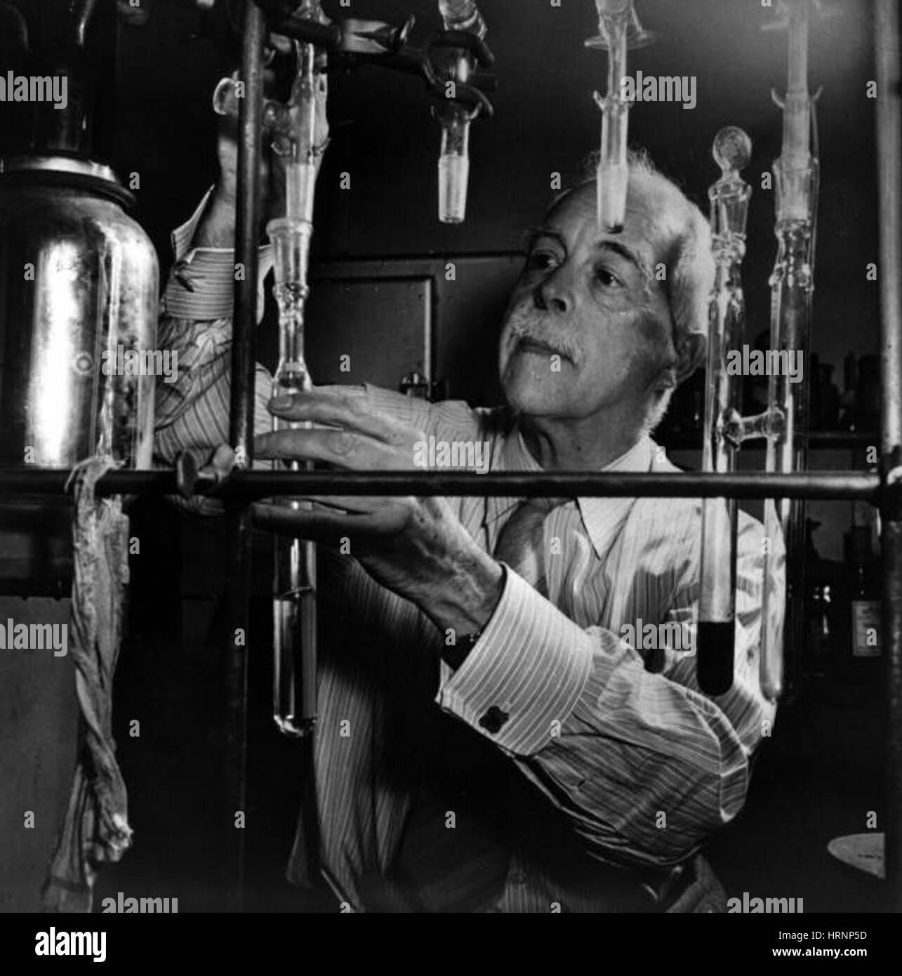 Gilbert N. Lewis, American Physical Chemist - Stock Image