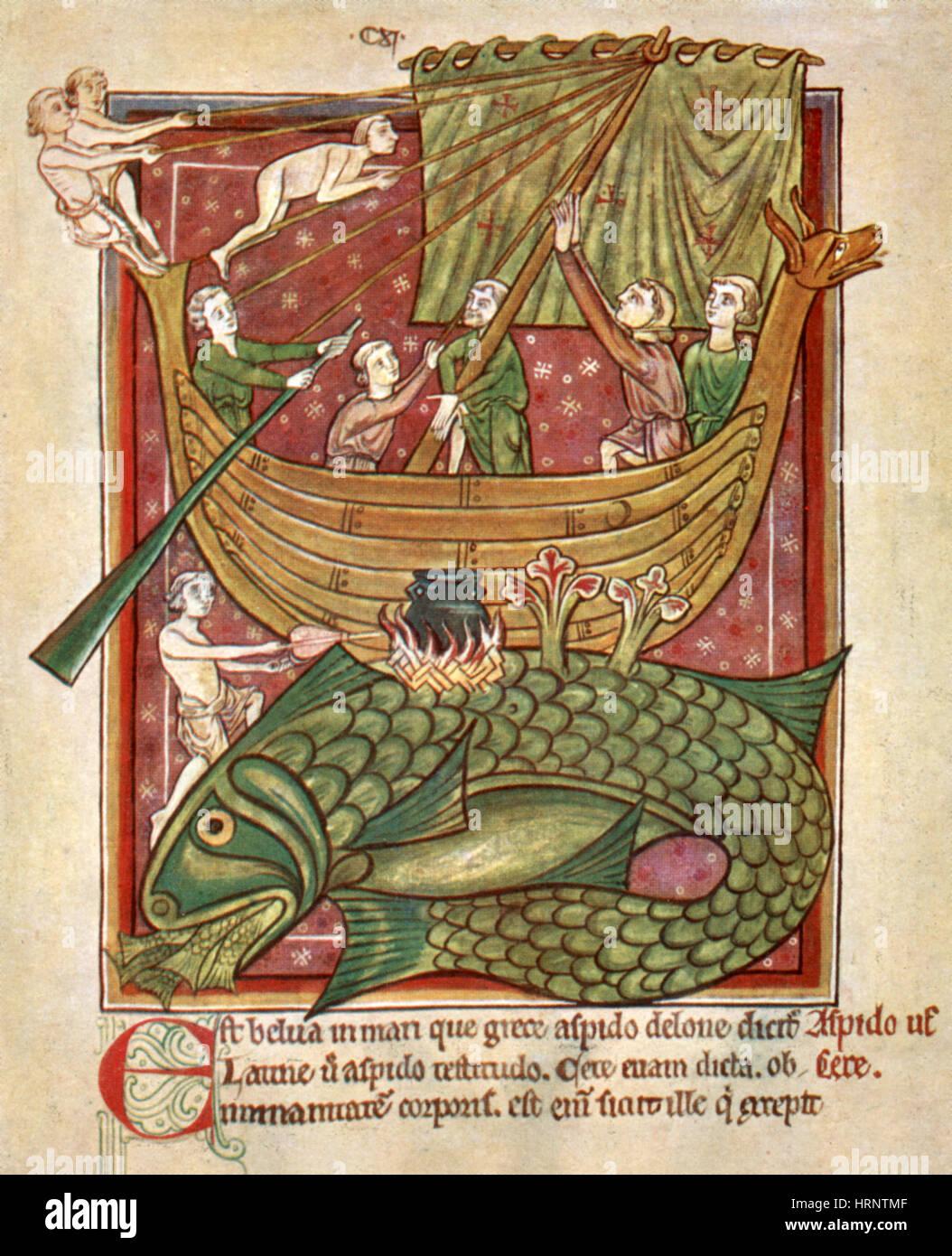 Monstruos Marinos, 13th Century - Stock Image