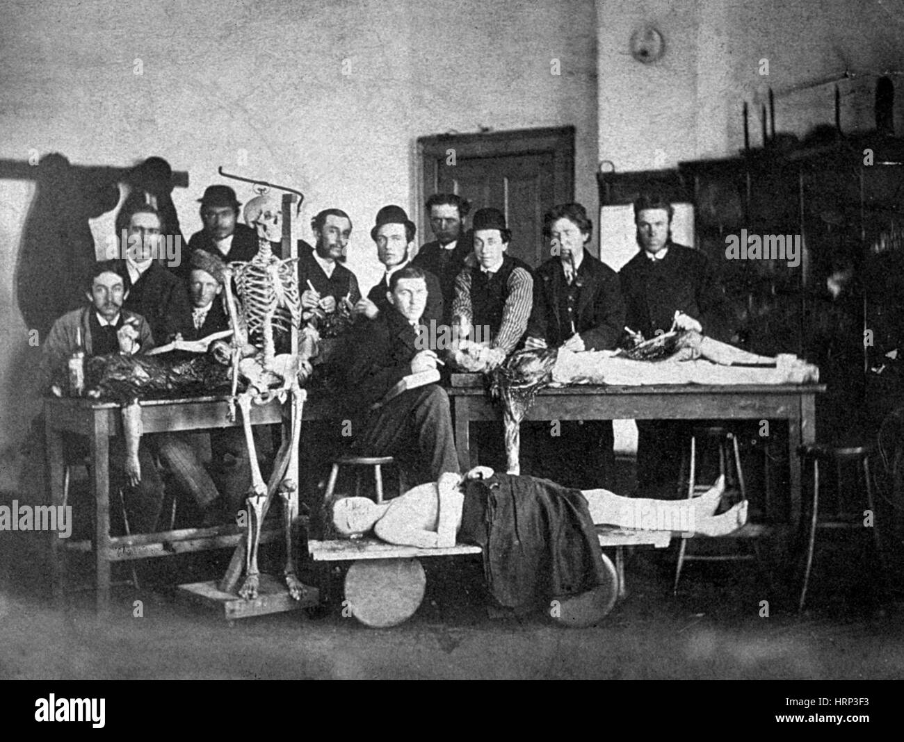 Medical Students and Cadavers, 1910s - Stock Image
