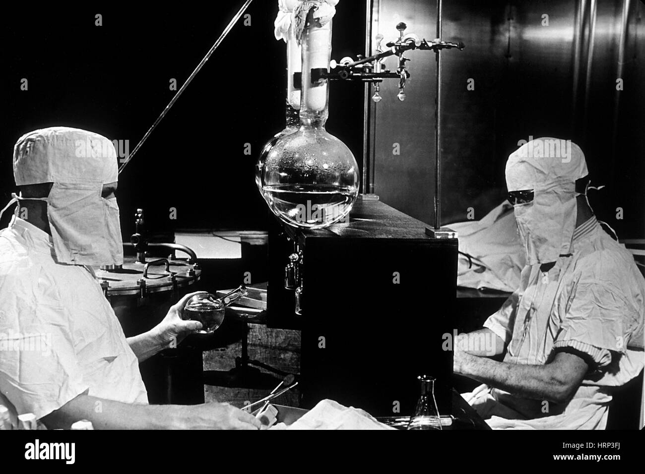 Cancer Research, Genetics Laboratory, 1950 - Stock Image