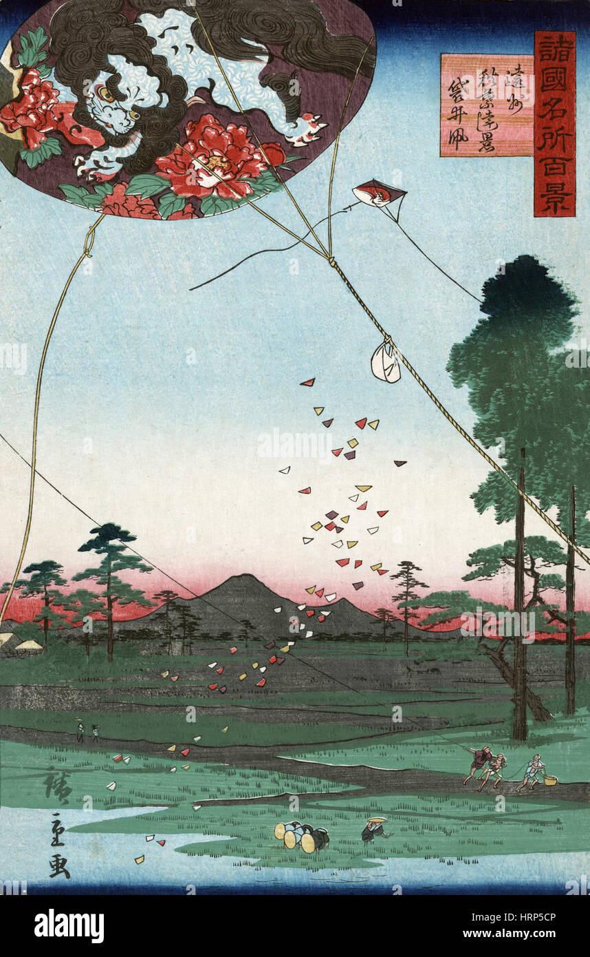 Kite Flying - Stock Image