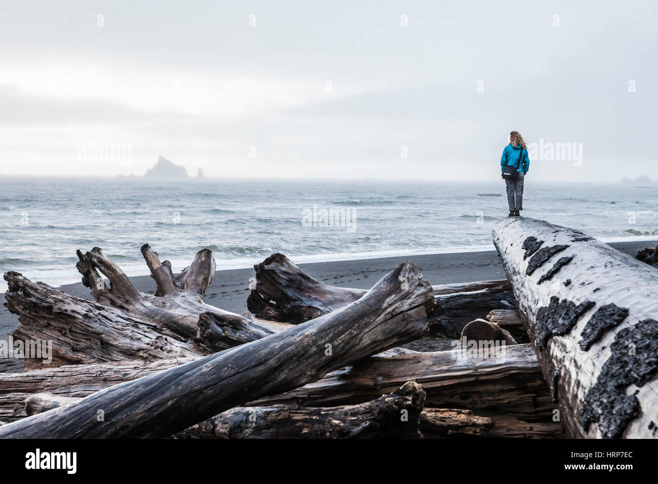 A woman standing at the end of a large driftwood log on Rialto Beach on a foggy overcast day, Olympic National Park, Stock Photo