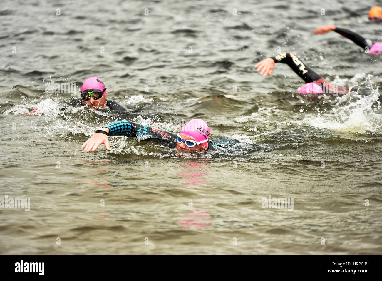 Swimmers finish the Ullswater Swim, Lake District UK Stock Photo