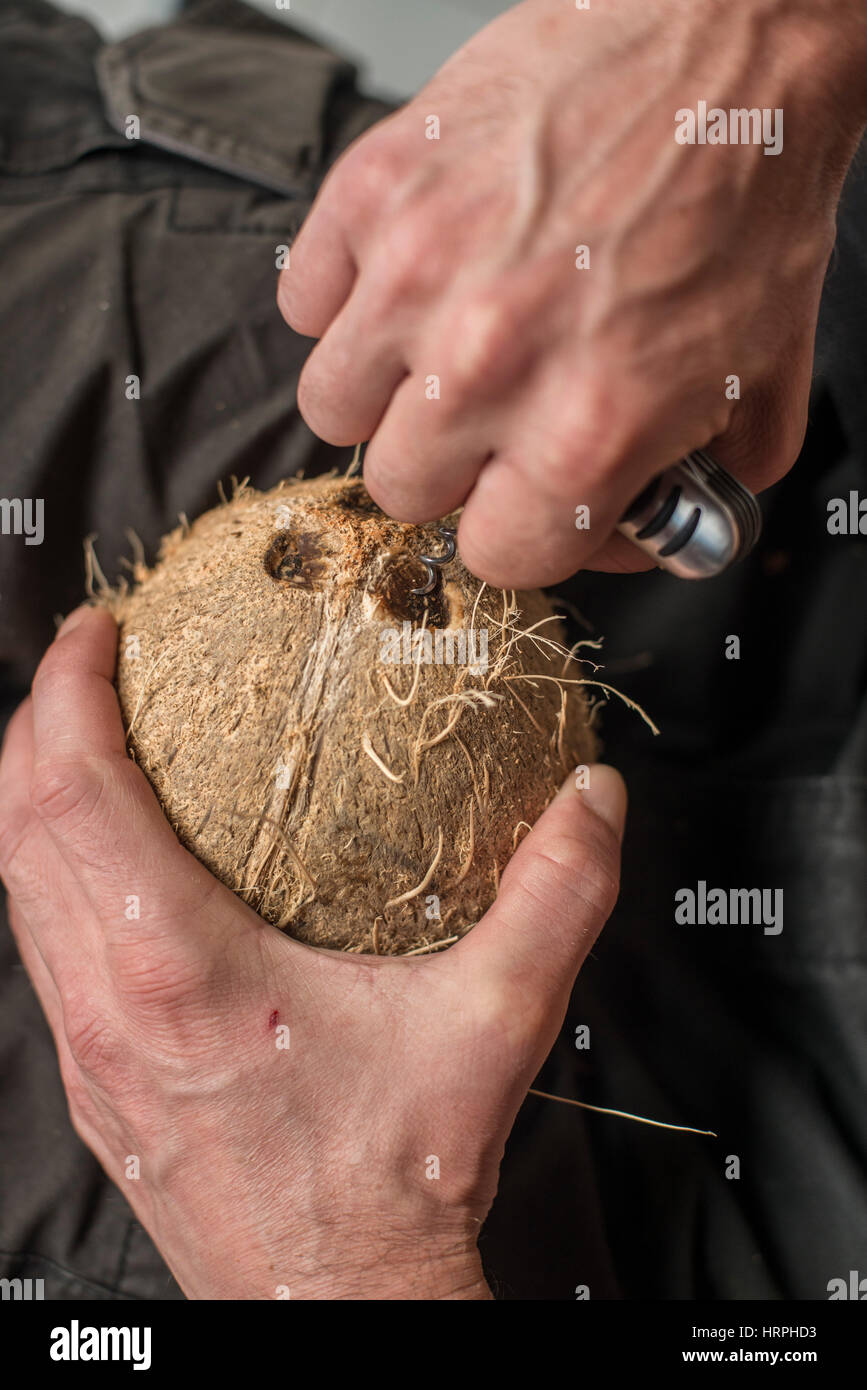 reaching coconutwater - Stock Image