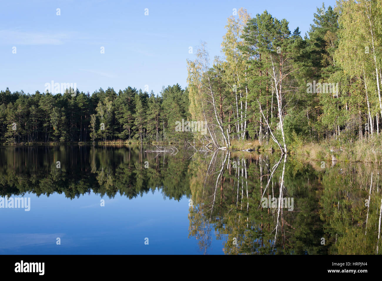 landscape with a reflection in the lake - Stock Image
