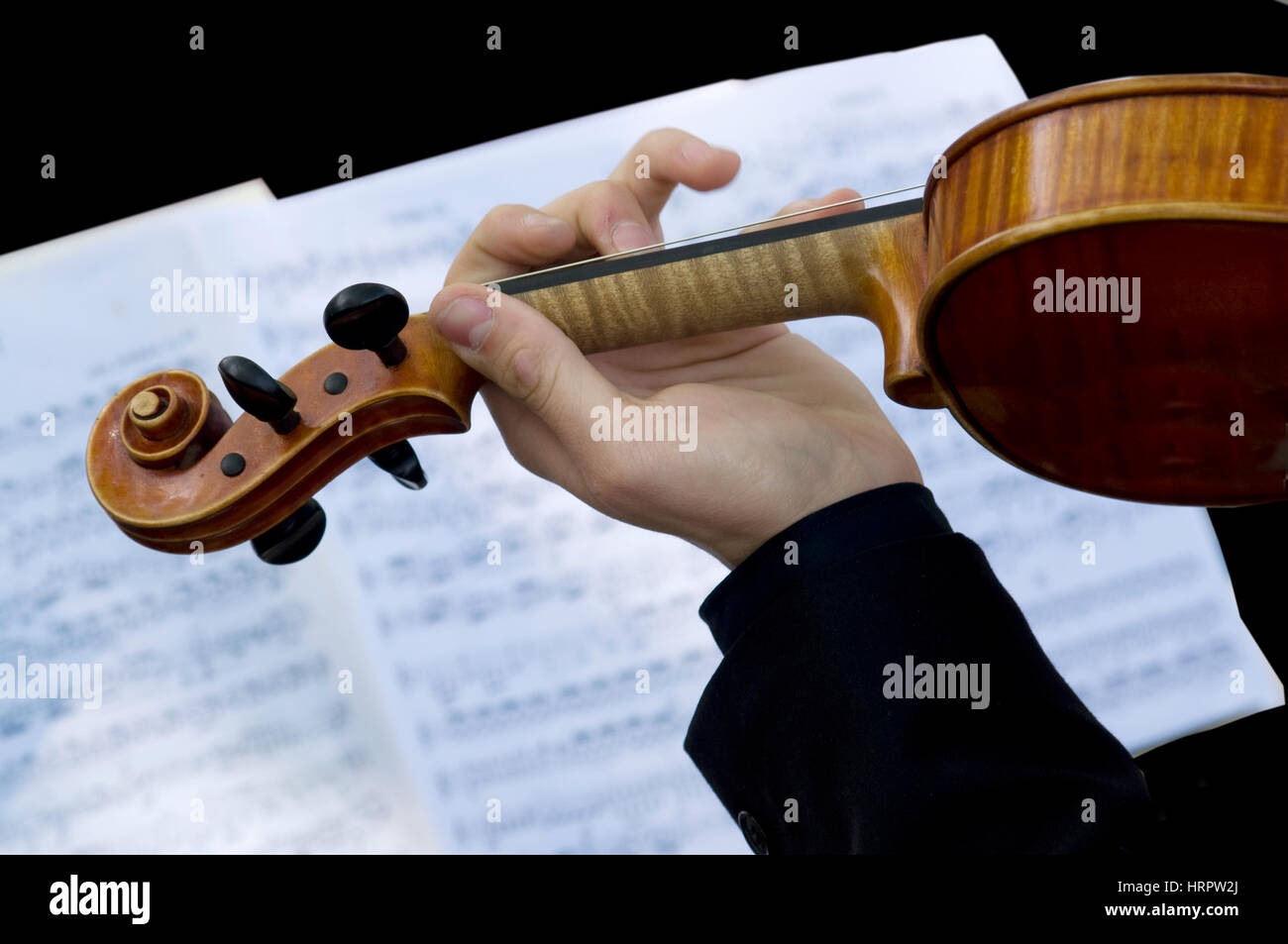 Play the violin according to the score - Stock Image