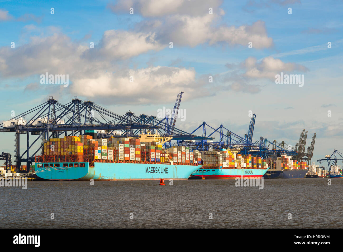 Container ships being unloaded at the largest container port in the UK, Felixstowe docks, England. Stock Photo