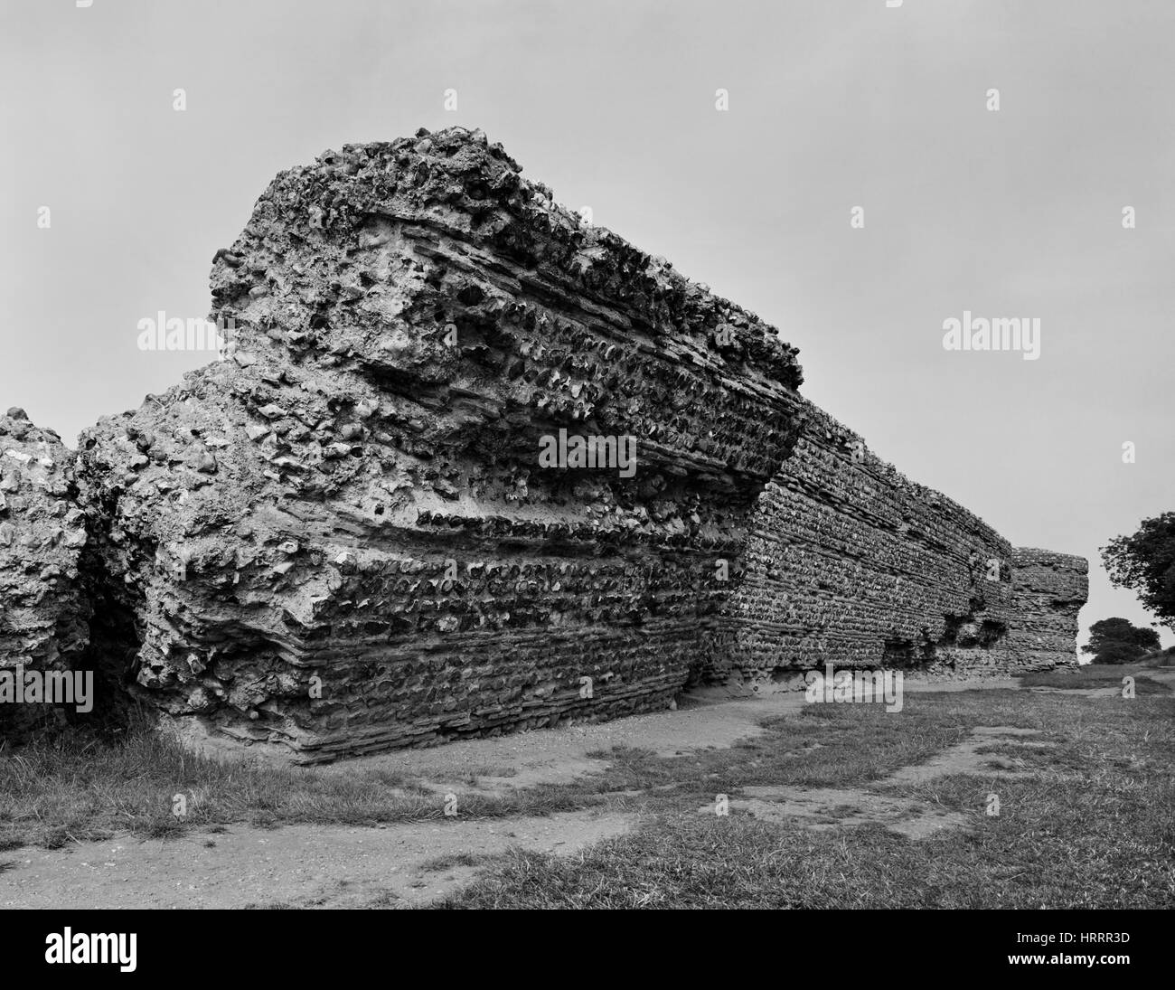 Looking ENE at the exterior face of the S wall & SE projecting bastion of Burgh Castle Roman fort, Norfolk, - Stock Image