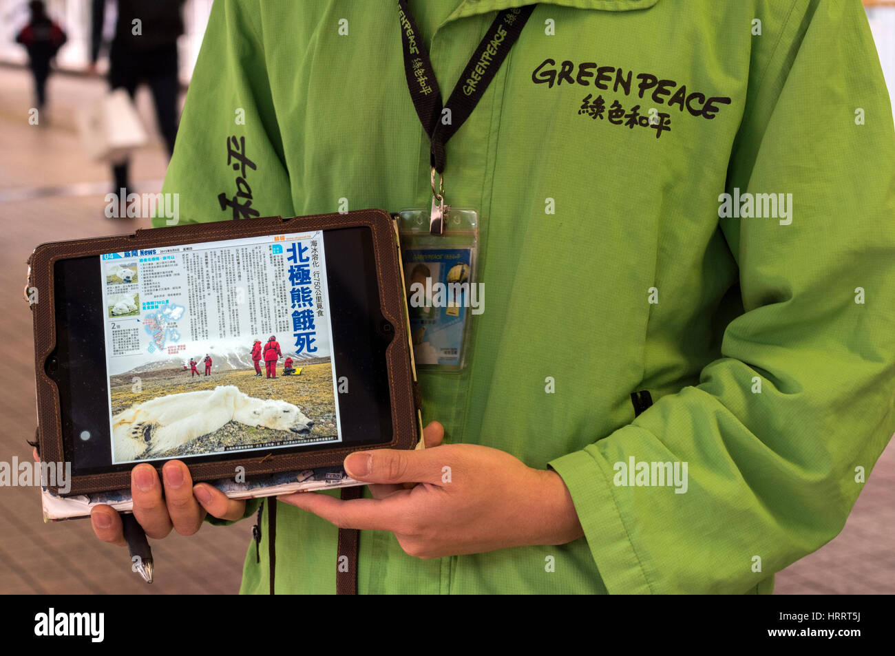 Greenpeace activists gathering signatures for endangered species, Polar bears, Hong Kong, China. - Stock Image