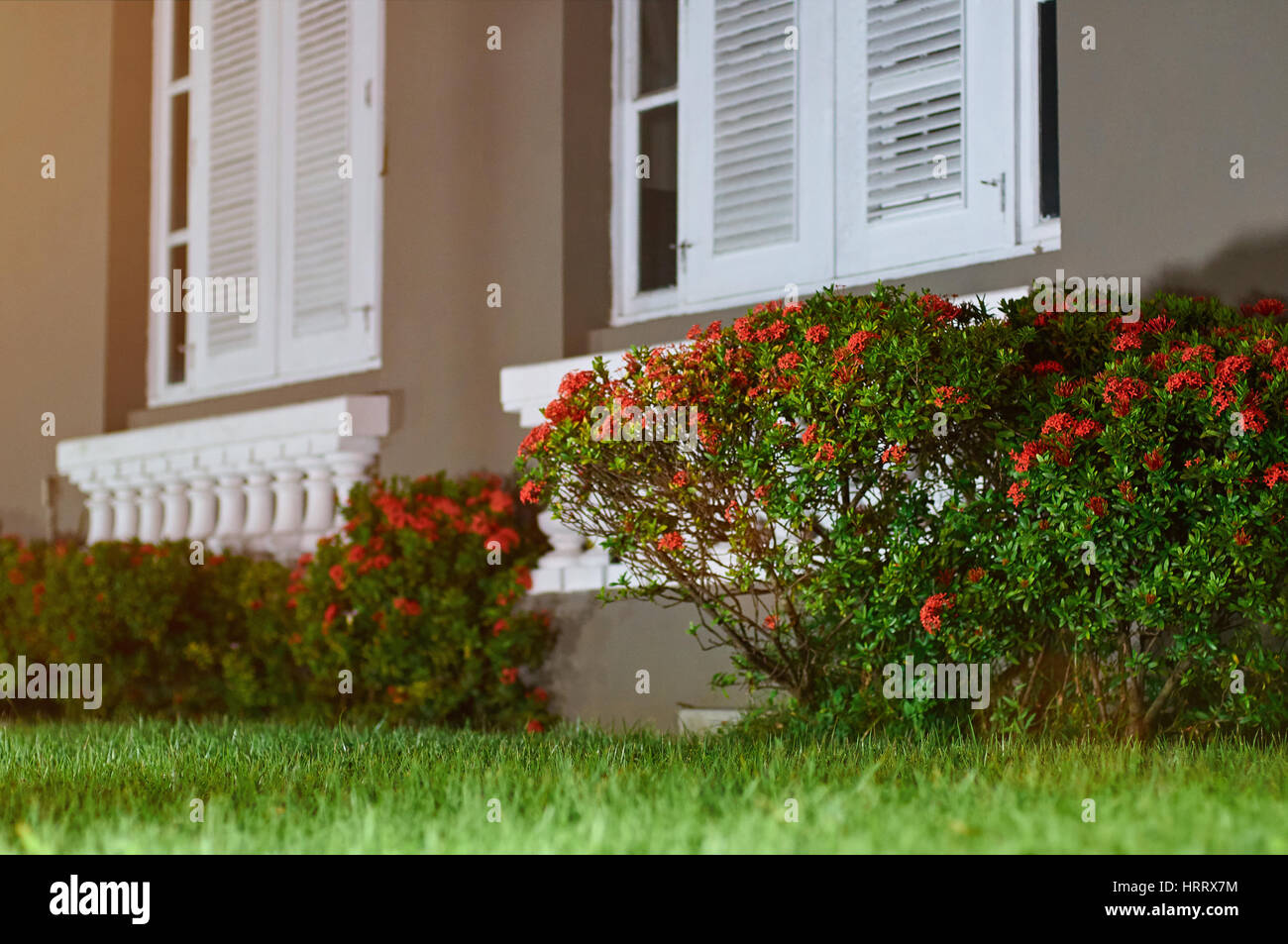 Yard with flowers infront of house. Grass lawn garden with white ...