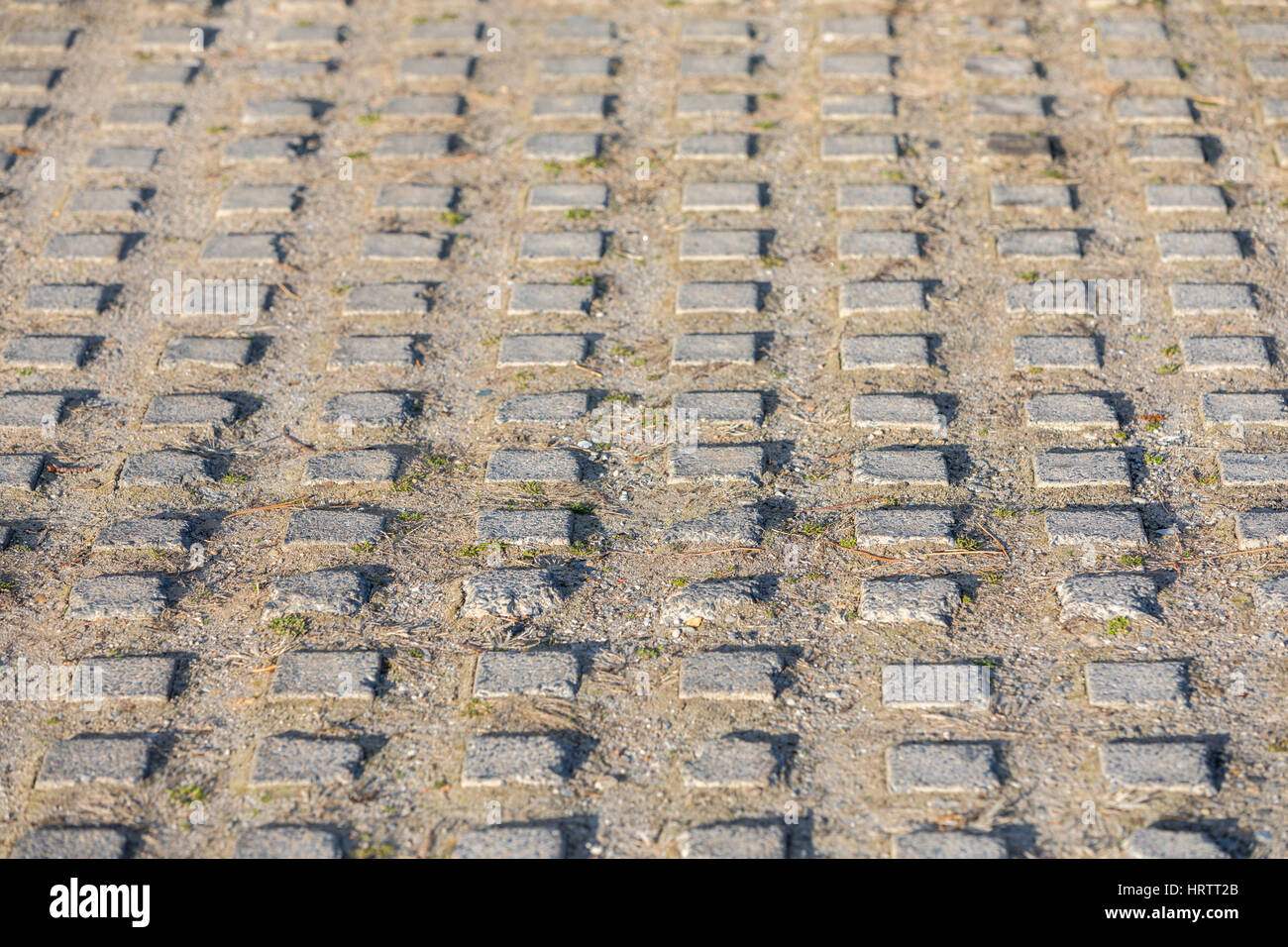 concrete grid that is part of a driveway - Stock Image