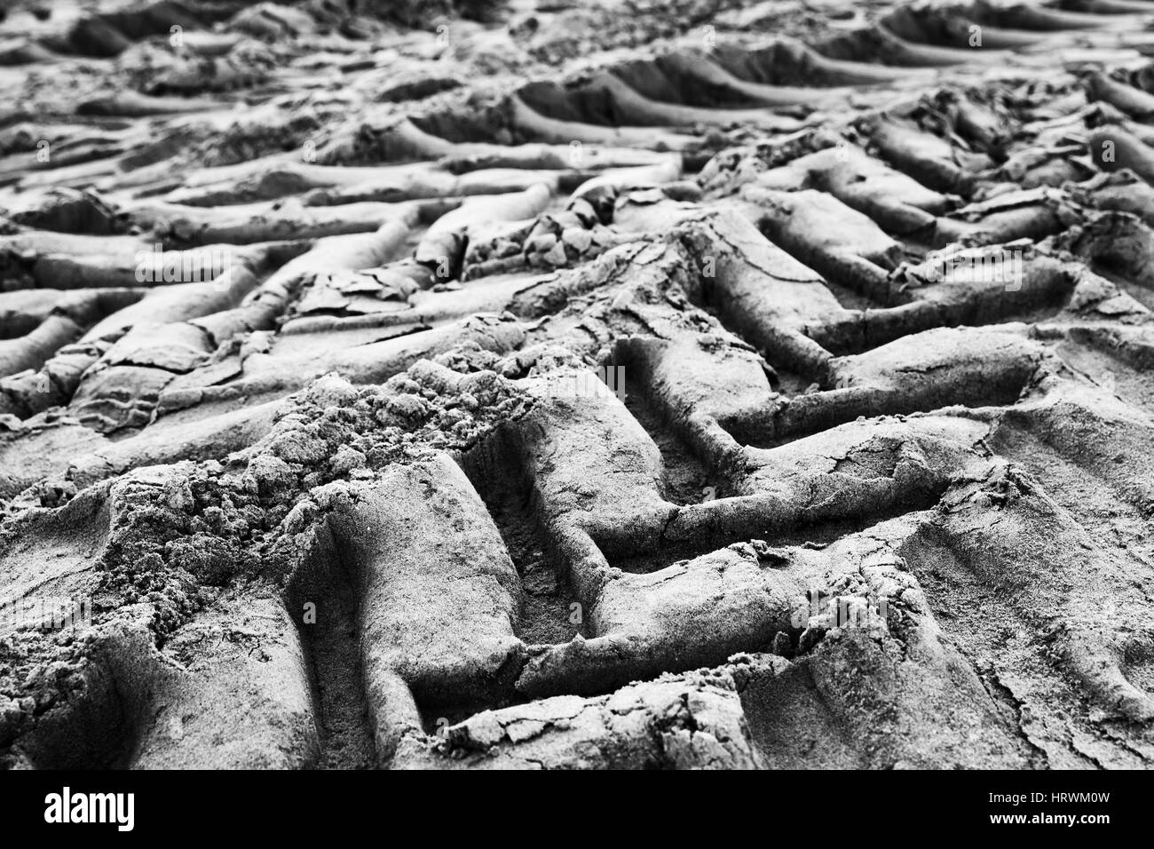 Tractor tire tracks on wet gray ground, abstract monochrome transportation background photo with selective focus - Stock Image