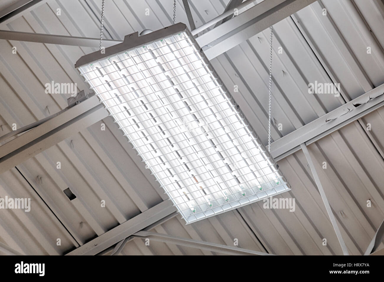 Fluorescent Light Fixture Stock Photos & Fluorescent Light Fixture ...
